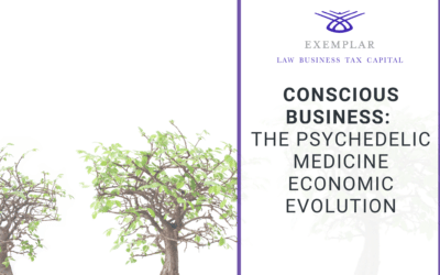 Conscious Business: The Psychedelic Medicine Economic Evolution