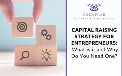 Capital Raising Strategy for Entrepreneurs: What is it and Why Do You Need One?